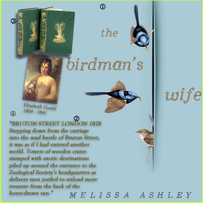 birdman'swife1