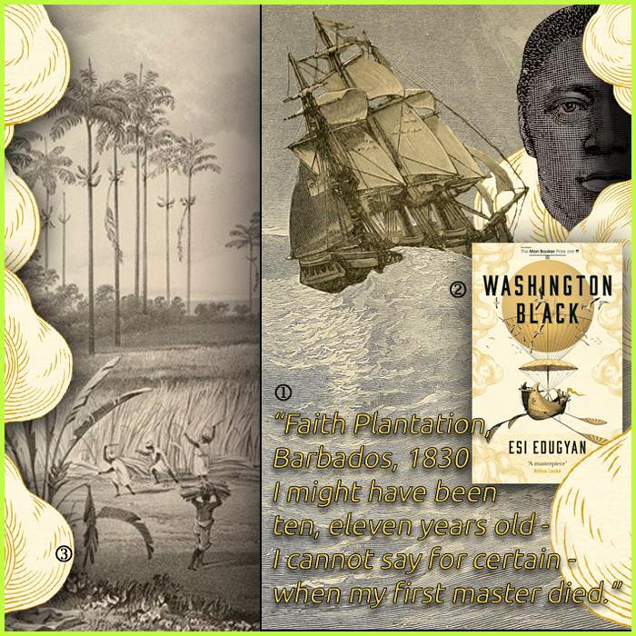 washingtonblack
